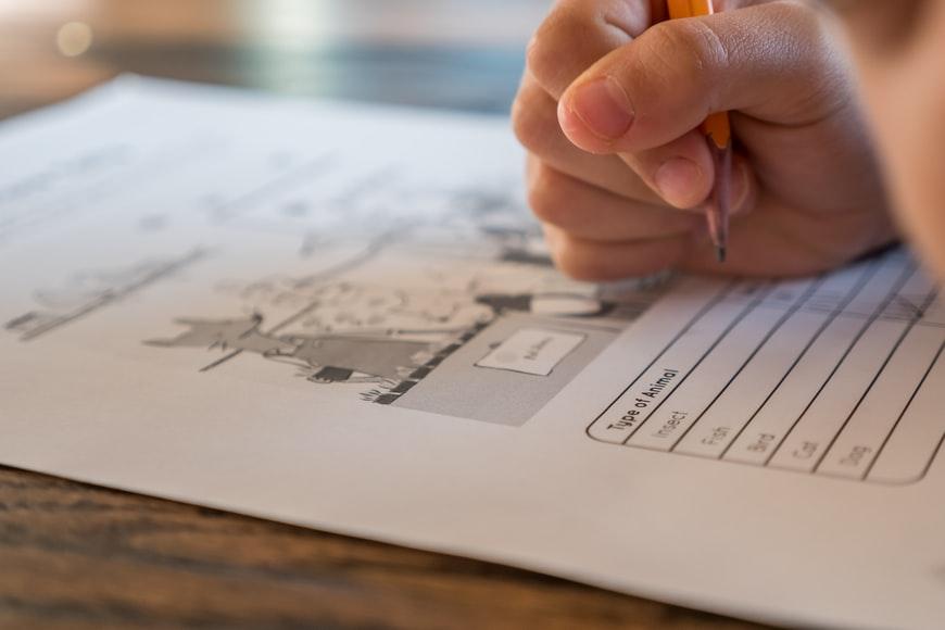 taxation homework