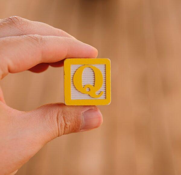 Q Downloader